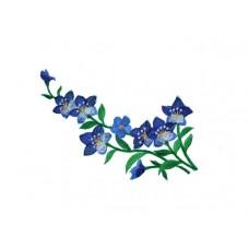 bloem applicatie violen blauw
