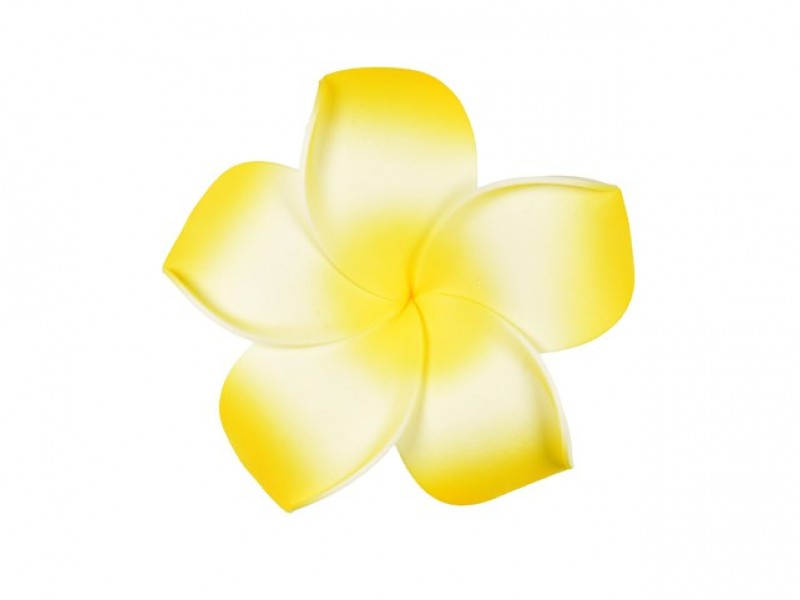 corsage hawaii  geel groot