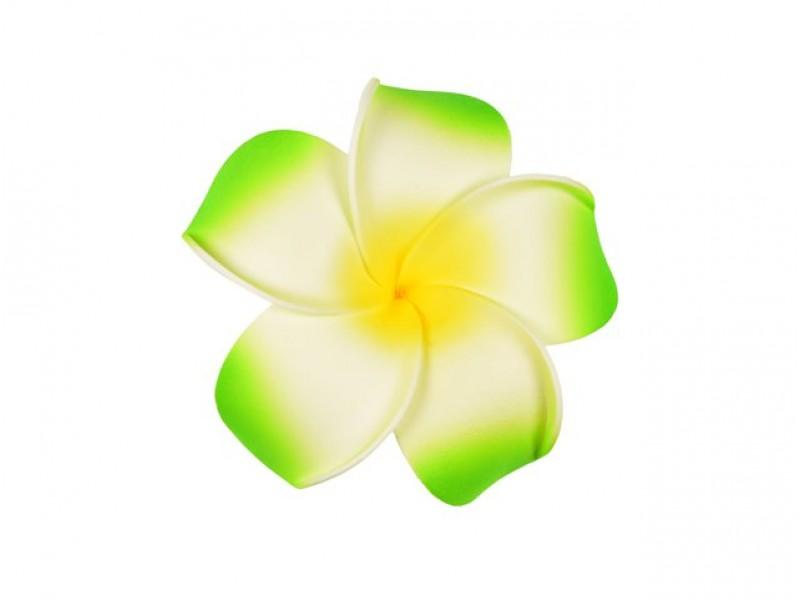corsage hawaii groen groot