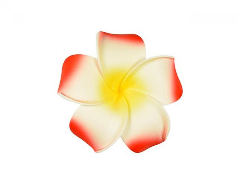 corsage hawaii rood groot