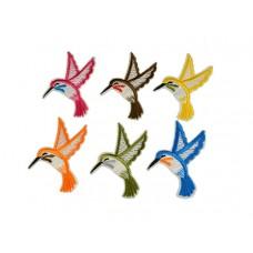 applicatie kolibri set 6 stuks