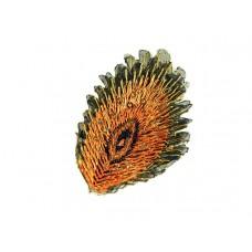 applicatie pauw veer oranje goud