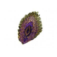 applicatie pauw veer paars goud