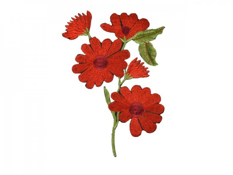 applicatie rode anemoon op tak middelgroot