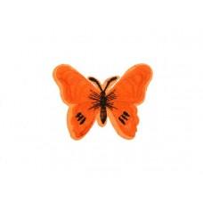 applicatie vlinder oranje zwart