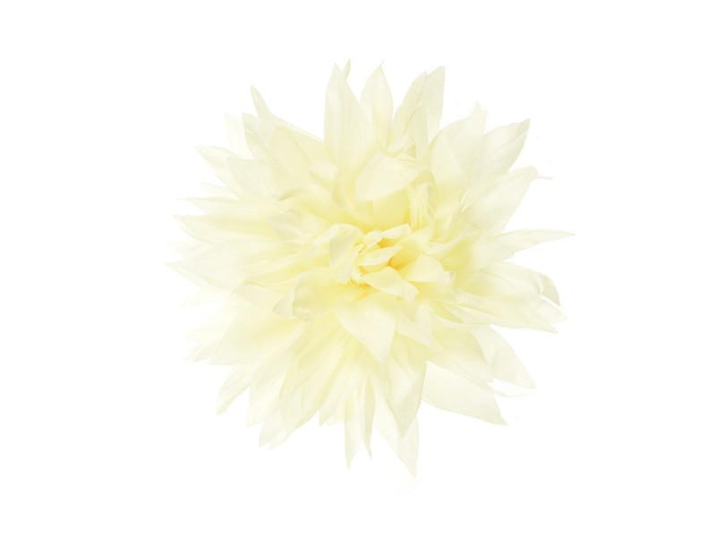 bloem corsage vanille wit dahlia