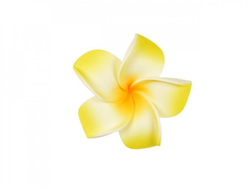 corsage hawaii  geel middel