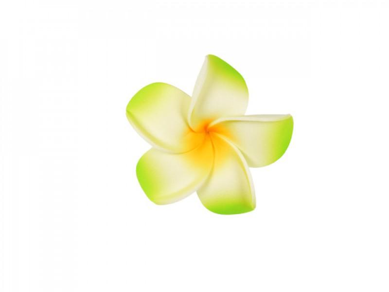 corsage hawaii groen middel