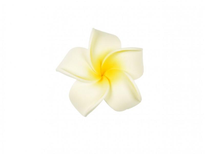 corsage hawaii wit middel