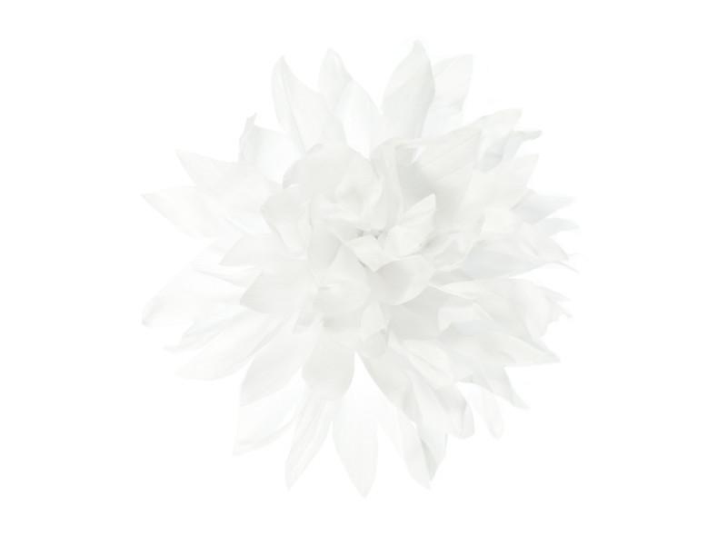 corsage wit dahlia