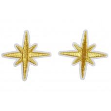 gouden sneeuwvlok patch 5,5 cm 2 stuks