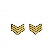rang onderscheiding embleem goud 2 stuks