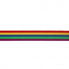 regenboog elastiek 40 mm