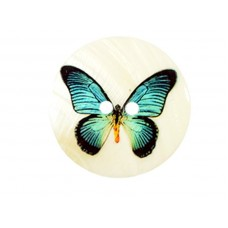 parelmoer knoop vlinder 5 cm